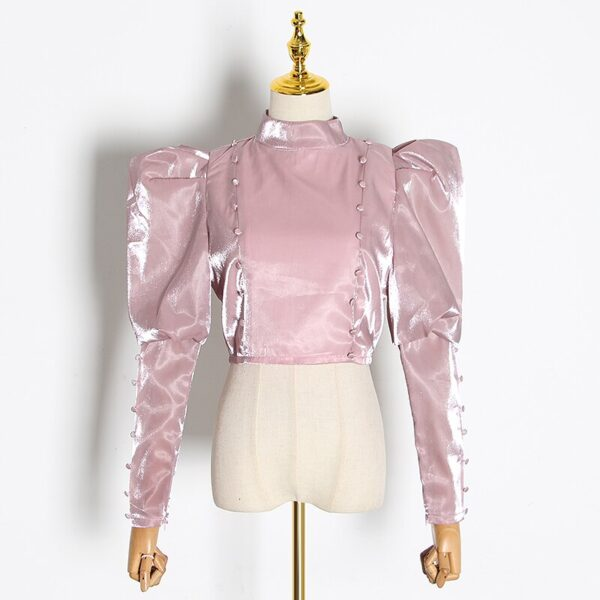 TWOTWINSTYLE-Elegant-Short-Blouse-For-Women-Stand-Collar-Puff-Long-Sleeve-Solid-Shirt-Female-2020-Autumn-1.jpg