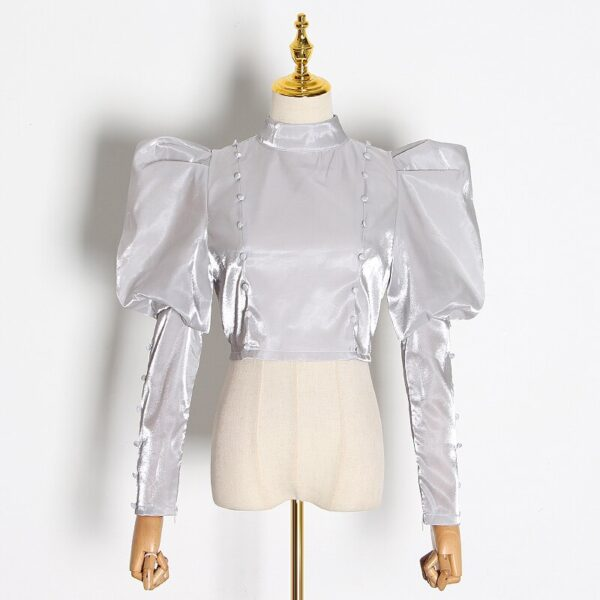 TWOTWINSTYLE-Elegant-Short-Blouse-For-Women-Stand-Collar-Puff-Long-Sleeve-Solid-Shirt-Female-2020-Autumn-2.jpg