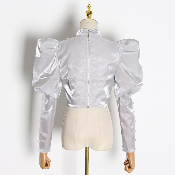TWOTWINSTYLE-Elegant-Short-Blouse-For-Women-Stand-Collar-Puff-Long-Sleeve-Solid-Shirt-Female-2020-Autumn-3.jpg
